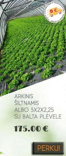 https://www.siltnamiaiinternetu.lt/arkinis-siltnamis-albo-su-balta-plevele74835-1-16843.html